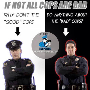 Why Don't the Good Cops Do Anything About the Bad Cops?