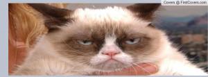 grumpy_cat_rules-1170913.jpg?i