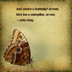 quotes butterfly kisses quotes images of butterflies quotes about life ...