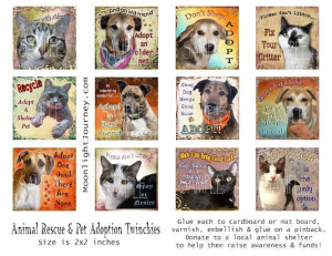 PeT ReScUe collage sheet adoption cat dog by moonlightjourney666