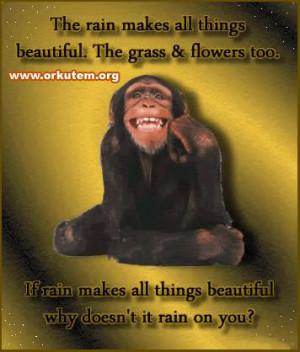 Funny Rain comments images orkut scraps