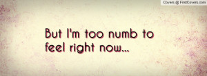 But I'm too numb to feel right now Profile Facebook Covers