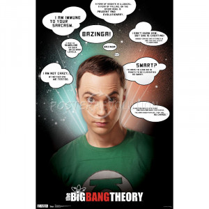 Big Bang Theory Sheldon Quotes TV Poster Print - 22x34