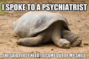Depressed Turtle…