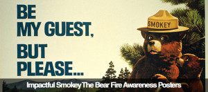 smokey bear often unofficially referred to as smokey the bear is a ...