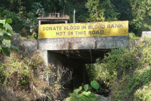 Donate blood in blood bank not on the road!!