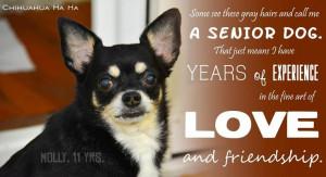 Senior Dogs Quotes Senior dog quote via www.