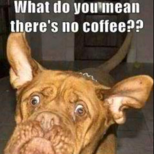 Mornings without coffee!