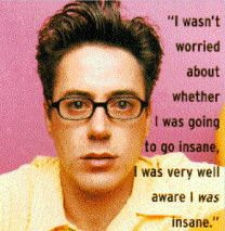 robert downey jr quotes | Robert Downey Jr Quotes