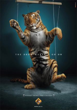 pledge to end circus cruelty . Ask your local council to ban animal ...