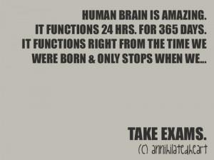exam, funny, head, life, nice, quote, quotes