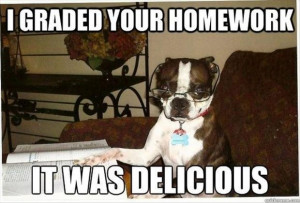 dog ate my homework, funny pictures