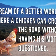 Funny Chicken Quotes