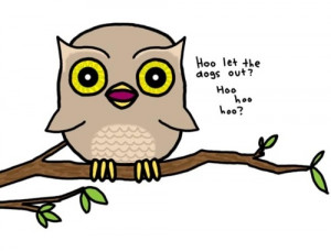 cute, drawing, funny, hoot, owl, quote, typography