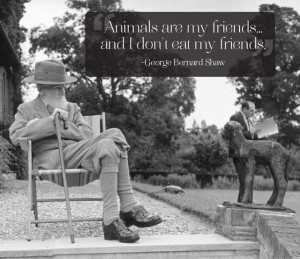 great-quotes-about-pets-21-pics_14.jpg