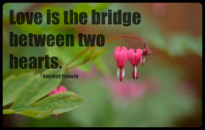 Two Hearts One Love Quotes Love is the bridge between two