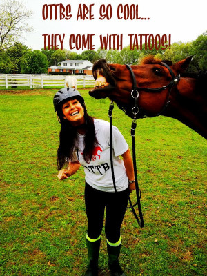 ... for Horses . . . Off The Track Thoroughbred OTTB qoutes from my sister