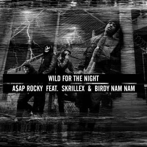 ... Skrillex & Birdy Nam Nam – Wild For The Night » Wild For The Night