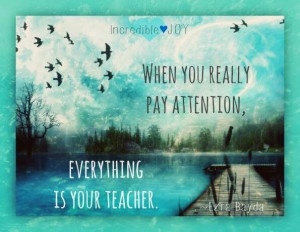 Everything is your teacher, quotes