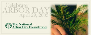 arbor day foundation arbor day foundation arbor day arbor day arbor ...