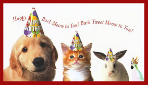 Birthday Wishes for Dogs and Messages