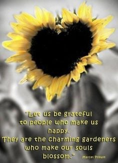 quote via carol s country sunshine on facebook more sunflowers quotes ...