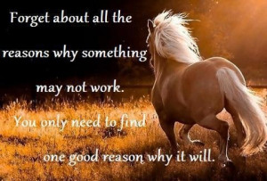 Quote of the Day: Forget about all the reasons why something may not ...