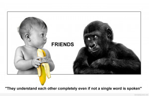 Funny Friendship Quotes HD Wallpaper 9