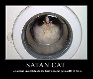 cat-inspirational-poster_03