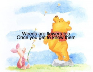Wise Winnie the Pooh quotes7 Funny: Wise Winnie the Pooh quotes
