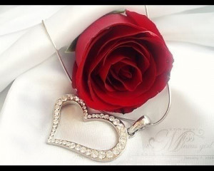 rose-and-heart-roses-romantik-love-quotes-jewel-PMac20-flowers-flowers ...
