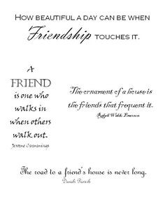 Funny Friends Quotes More