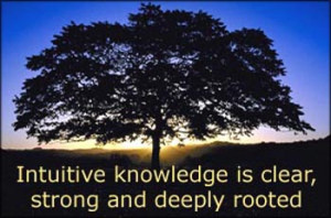 Big tree in silhouette in the sunset: Intuitive knowledge is clear ...