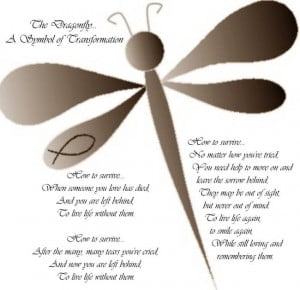 The Dragonfly... A Symbol of Transformation by kdnaturals