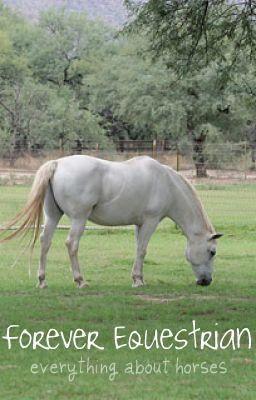 Forever Equestrian