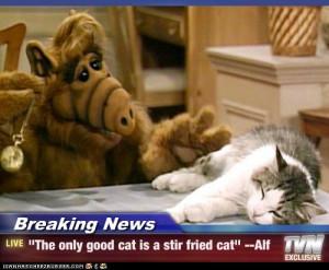 Funny Alf Quotes
