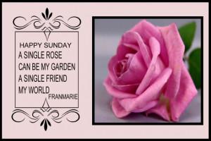pink roses photo: Happy Sunday Sunday-1.jpg