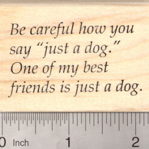 animal rescue sayings item d 23709 pet adoption