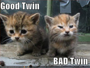 You decide whether they are good twin or bad twin ?
