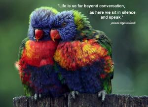 Parrot colorful pamela quote