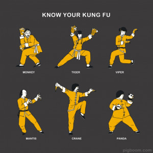 Know Your Kung Fu