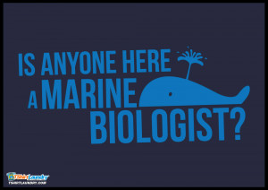 ... marine biologist. You never know when a beached whale might wash up on