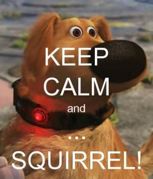 KEEP CALM and ... SQUIRREL! - KEEP