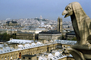 Notre Dame Funny Quotes