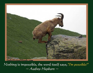 Photos With Best Motivational Quotes