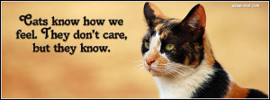 14124-cats-quote.jpg