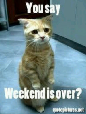 The weekend.is over