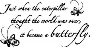 Just When The Caterpillar Thought The World Was Over It Becamse A ...