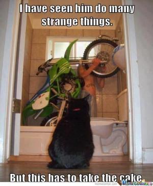 Strange Things...