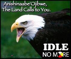 Medicine News - Indigenous Wisdom - Updates Hourly Anishinaabe Ojibwe ...
